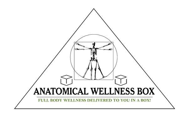Anatomical Wellness Box Photo 1