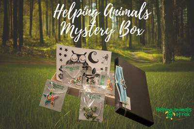 Helping Animals At Risk Animal Mystery Box Photo 2