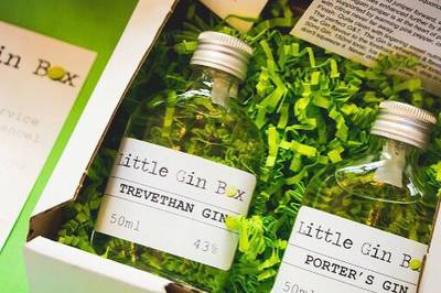 Little Gin Box Photo 1