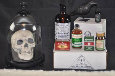 Anatomical Wellness Box Photo 3