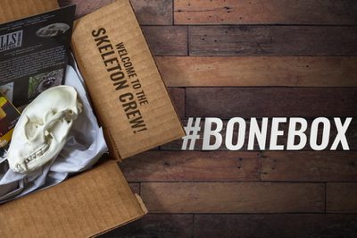 Skulls Unlimited's BoneBox Photo 1