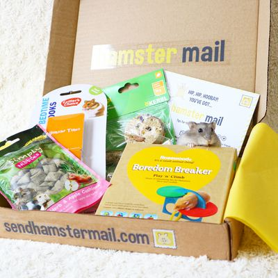 Hamster Mail Photo 2