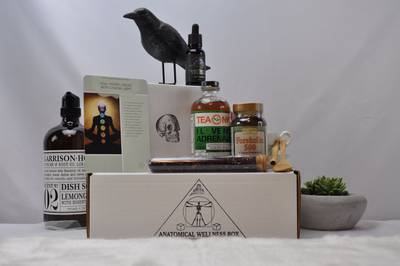 Anatomical Wellness Box Photo 2