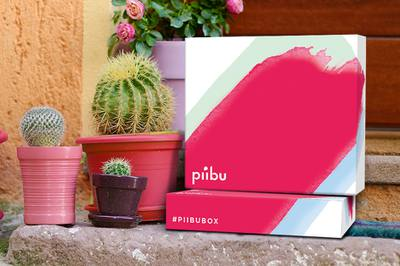 Piibu Box Photo 3