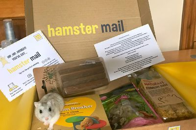 Hamster Mail Photo 3